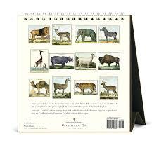 cavallini calendars cavallini 2017 les animaux desk calendar home kitchen
