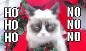 Grumpy Cat Meme I Had Fun Once - ho ho ho try no no no grumpy cat know your meme