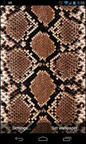 live snake wallpaper wallpapersafari