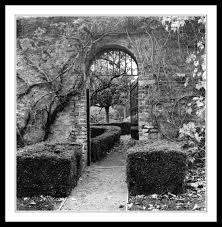 farmleigh visions of the phoenix park