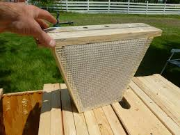Top Bar Beehive Plans Free Best 25 Top Bar Hive Ideas On Pinterest Flow Hive Price