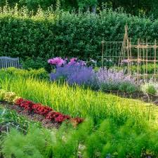 images of beautiful gardens beautiful gardens traditional home