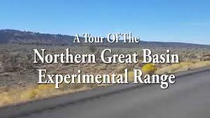 great basin native plants a tour of the northern great basin experimental range youtube