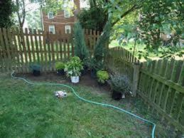 wonderfull design corner fence landscaping landscaping trees