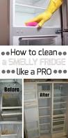 Home Cleaning Tips 1142 Best Cleaning Images On Pinterest