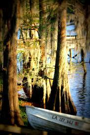 47 best under the bayou moon images on pinterest melody gardot