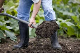 easy composting the dig and drop method