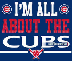Chicago Cubs Memes - best 25 chicago cubs memes ideas on pinterest cubs chicago