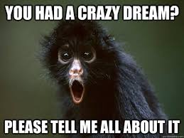 Monkey Face Meme - 35 most funny monkey meme pictures and images