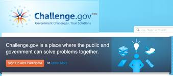 Challenge Site Government S Idea Of Innovation A Crowdsourcing Web Site