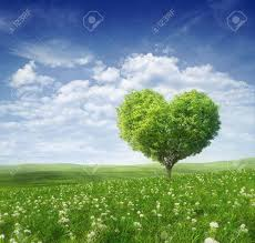 tree in the shape of valentines day background stock photo