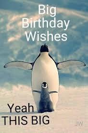 Penguin Birthday Meme - funny birthday memes home facebook