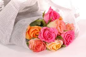 Flower Delivery Free Shipping 100 Cheap Flower Delivery Free Shipping Strange U0027s