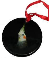 eclectus parrot ornament naturechest