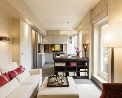 Houzz Living Room Ideas by Narrow Living Room Design Best Narrow Living Room Design Ideas