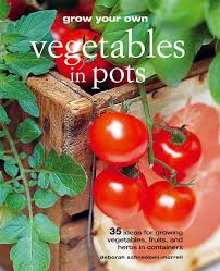 grow your own vegetables in pots 35 ideas for growing vegetables