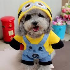 Funny Dog Costumes Halloween Popular Dog Halloween Funny Costume Buy Cheap Dog Halloween Funny