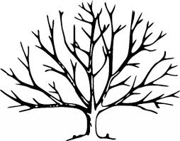 bare tree coloring page top 25 tree coloring pages for your
