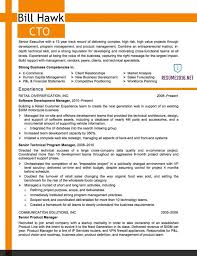 example it resumes resume samples professional templates s saneme