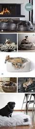 Crib Mattress Dog Bed by The 25 Best Dog Beds Ideas On Pinterest