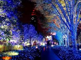 New Year Decorations In Japan by Sparkling Winter Night Ana Eve Anaevearabia Sparkling Moments