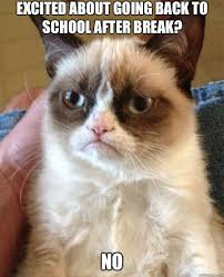 Winter Break Meme - 9 memes that perfectly sum up going back to college after winter break