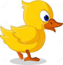 cute little baby duck cartoon walking royalty free cliparts