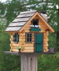 1036 best bird houses images on bird feeders bird