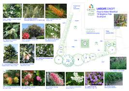small native plants for australian gardens circular garden designs idolza