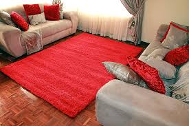 Bright Colored Rugs Floors U0026 Rugs Red Furryshaggy Rugs For Contemporary Living Room