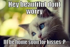 Cat Soon Meme - first world problems cat memes quickmeme