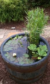 container water garden mosquitoes home outdoor decoration