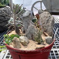 1591 best fg containers images on pinterest fairies garden mini