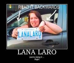 Funny Harley Davidson Memes - car humor funny joke road street drive driver lana laro license