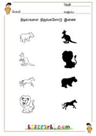 tamil shadow fun fun worksheet for kids kindergarten tamil