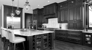 Most Popular Wood For Kitchen Cabinets Arresting Top Kitchen Cabinet Decorating Ideas Tags Popular