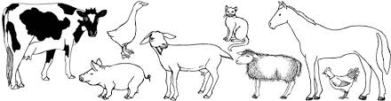 farm animals pets gardens coloring pages