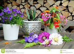 garden pots design ideas flower gardening in pots room design ideas luxury on flower