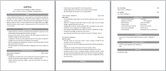 Sample Resume For Accounting Staff by Auditing Dissertation Ideas