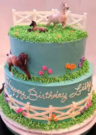 81 best cakes i u0027ve made images on pinterest birthday cakes