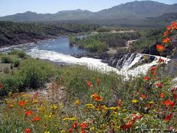 Arizona rivers images Arizona 39 s water uses and sources the arizona experience jpg
