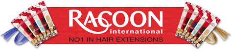 racoon hair extensions racoon international clip on hair racoon hair extensions human