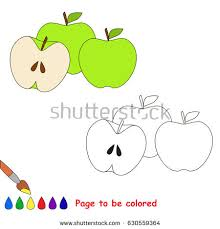 fruit elements collection coloring book stock vector 708310576