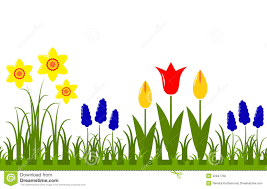 tulip clipart spring flower pencil and in color tulip clipart