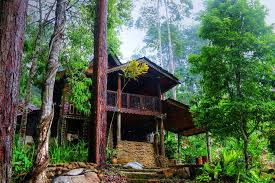 forest house forrest house home facebook