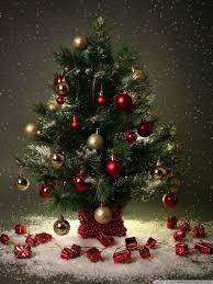 christmasmall tree wallpaper 768x1024mall