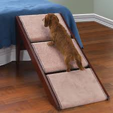 dog stairs for access pet u2014 new home design