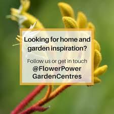flower power home facebook