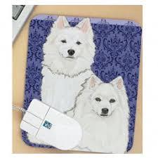 american eskimo dog ireland american eskimo dog breeds shop by pet