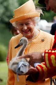 Queen Elizabeth by The Weirdest Powers Of Queen Elizabeth Ii Business Insider